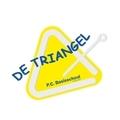 PCB De Triangel